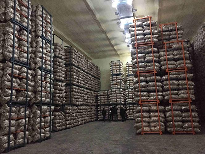 Freshness storehouse of Pioneer Garlic Group